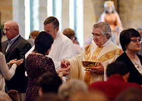 Msgr. Publius Xuereb distributes Communion during a Mass celebrating his 50th anniversary as a priest at Holy Redeemer Parish in Aledo, May 6, 2018