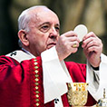 Pope Francis elevates host