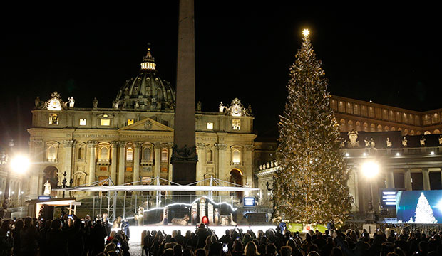 christmas tree at Vatican