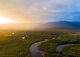 A view of the Amazon rain forest in Brazil. (Gustavo Frazao/Shutterstock.com)