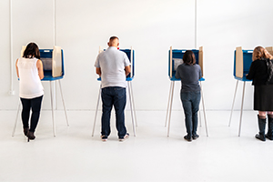 voters at voting booths