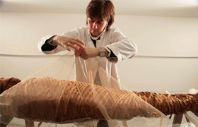 Cinzia Oliva, a textile restorer from Turin, Italy, who specializes in mummy wrappings, puts the finishing touches on restoring the mummy Ny-Maat-Re in the Vatican Museums' collections in this undated photo. Experts have just concluded a two-year compreh ensive study on the seven adult mummies in the Vatican Museums. (CNS photo/courtesy of Vatican Museums)